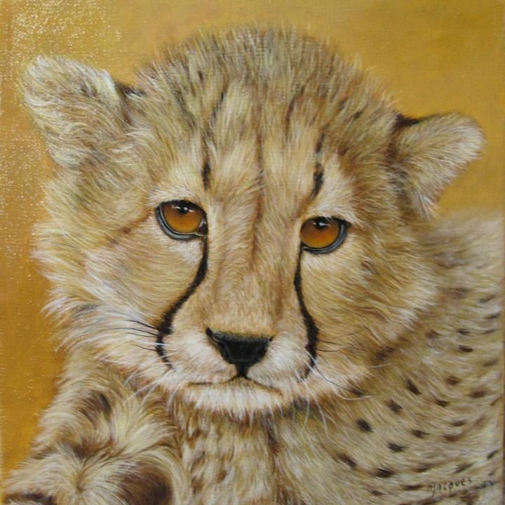 Jeune Guépard du Kalahari