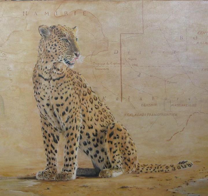 Léopard du Kalahari