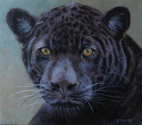 Portrait panthère noire