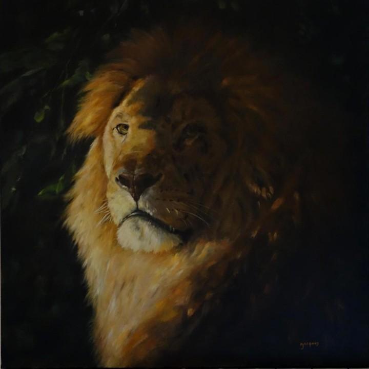 Portrait Lion clair obscur