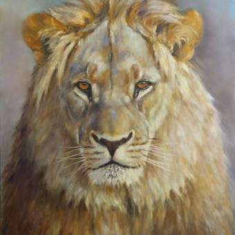 Portrait lion