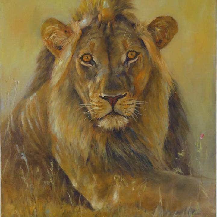 Jeune lion dans la savane
