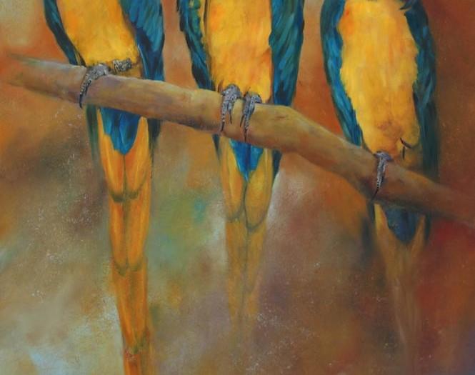 Les aras bleus